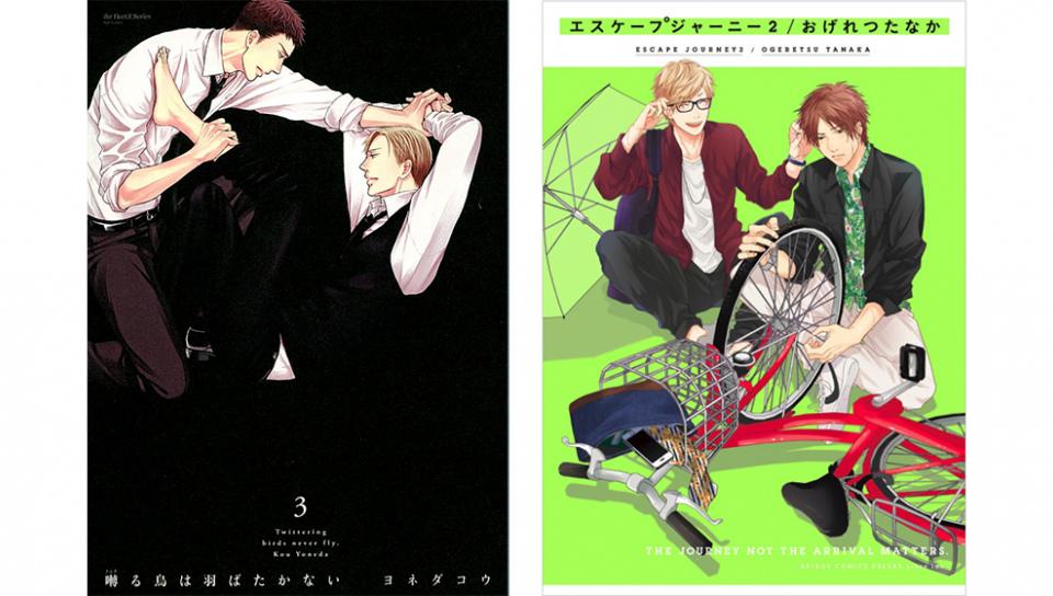 左:《鳴鳥不飛》第三集書封;右:《愛的逃避之旅》第二集書封(此二書皆為限制級讀物)