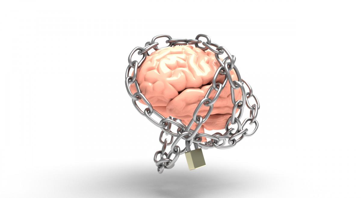 brain-3446307_0.jpg
